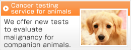 Cancer testing service for animals